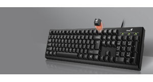 TECLADO GENIUS SMART KB-100 USB
